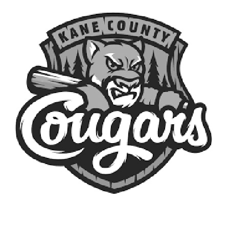 Kane Co Cougars Reading Program