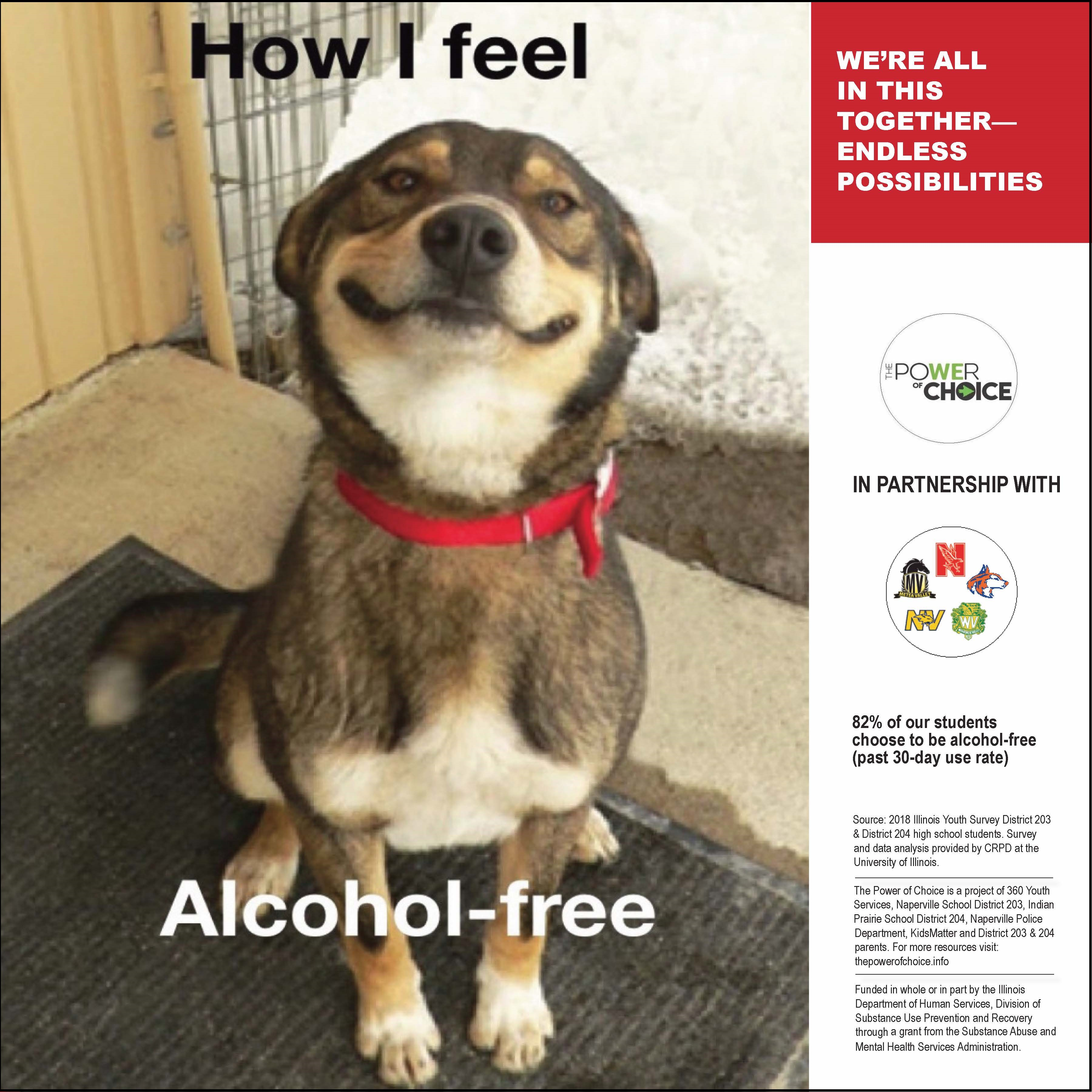 How I Feel - Alcohol Free