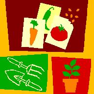 Gardening tools, vegetable seed packets and a plant
