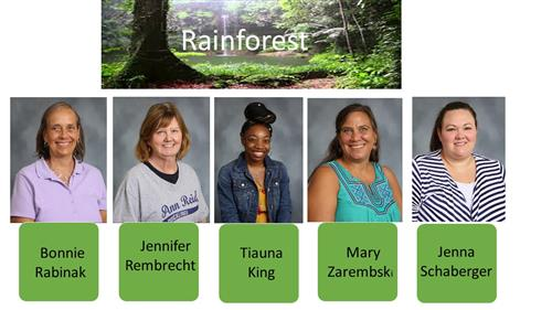 Rainforest Staff